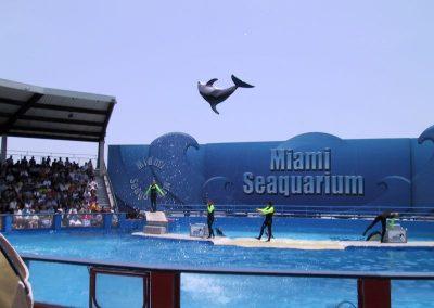 2001 Miami06