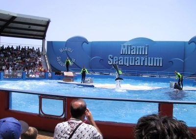 2001 Miami08