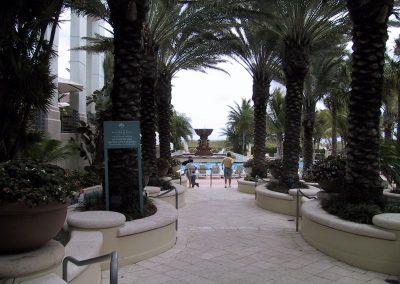 2001 Miami41