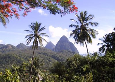 2001 St Lucia46