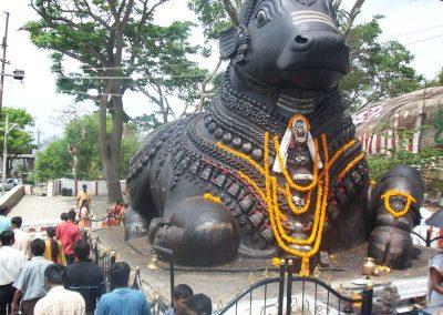 2008 India08