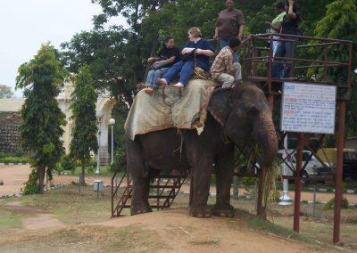 2008 India52