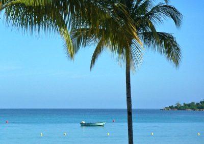 2009 Jamaica05