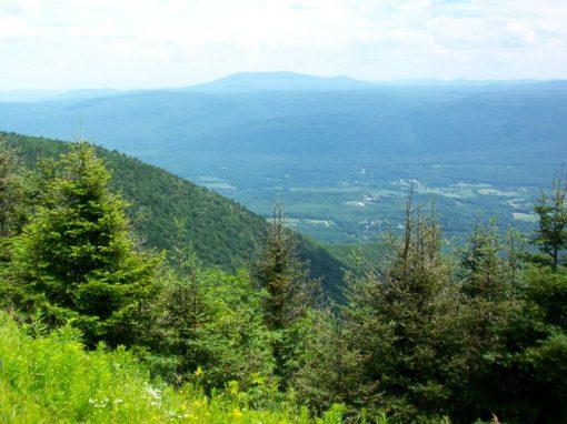 2010 Vermont