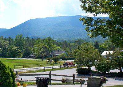 2010 Vermont40