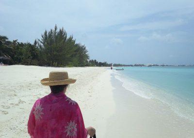 2011 Cayman58
