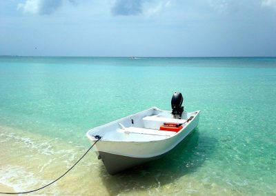 2011 Cayman59